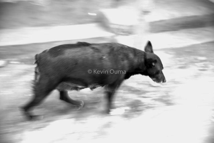 kevinouma_kenya_photographer_documentary-1